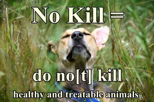 No kill definition.jpeg